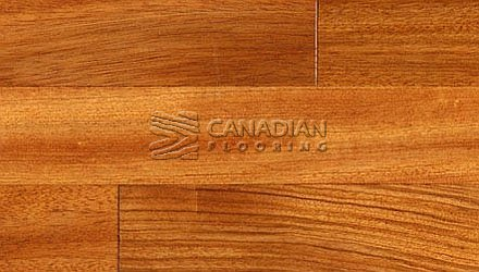 "Solid Hardwood Flooring, <br>Brazilan Cherry (Jatoba) <br> SUNCA,  4-1/2"" x 3/4"", <br> Color:  Natural"