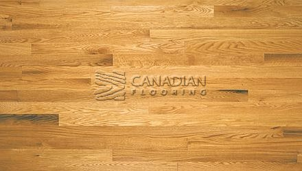 "Solid Red Oak<br> Husky Flooring<br>4-1/4"", Prestige<br>Color: Natural"