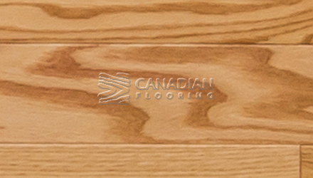 "Solid Red Oak, Superior Flooring, 3-1/4"", Bushed<br>Color:  Natural"
