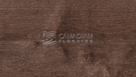 "Solid Hard Maple, Superior Flooring,  3-1/4"", Premier <br>Color:  Ciocoa"