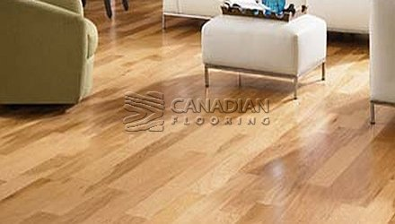 "Hickory, Canfloor, 6.5"" x 3/4"", Hand-Scraped & Distressed<br>Color:   Pure Natural"