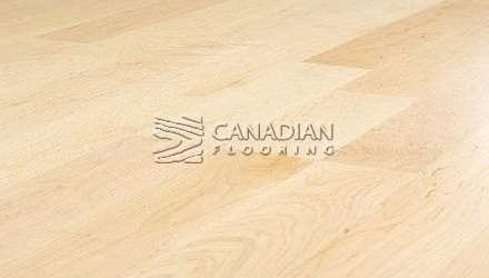 "Solid Hardwood Flooring, <br>Hard Maple, Panache, <br>3-1/4"" x 3/4"", <br>Color: Natural"