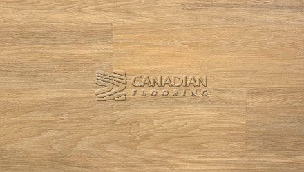 Luxury Vinyl Flooring, Canfloor, Montreal collection,  8.0 mm, with 2.0 mm iiC 73/STC 72 underpad<br>Color: 6203
